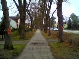 biesenthal-radweg-1.jpg