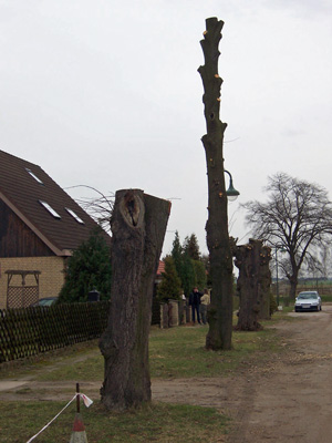 Ahrensfelde Goethestraße
