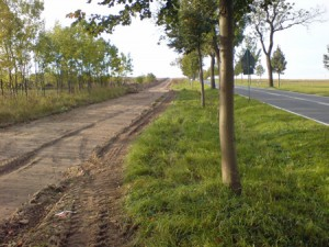 Radweg Rüdnitz-Biesenthal im Bau, Foto: Barnimblog