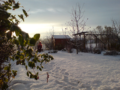 Winter in Rüdnitz